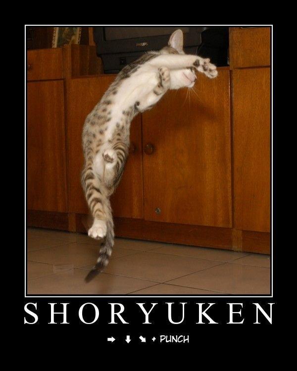 Joyeux nanniversaire Thune Shoryuken